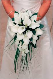 Calla Lily Bouquets Judy Carr Florist