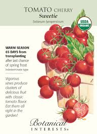 botanical sts sugar sweetie cherry tomato 30 seeds organic
