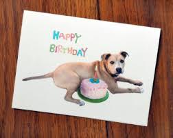 pitbull card etsy