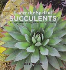 Amazon Succulents Under The Spell Of Succulents A Sampler Of The Diversity Of