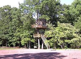 see our tree houses living tree online