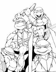 35 best ninja turtles images on pinterest ninjas teenage mutant