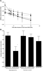 loss of endothelial glycocalyx during acute hyperglycemia