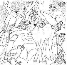 realistic tropical rainforest coloring pages womanmate com