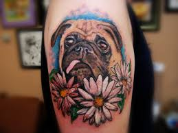 dog with hat tattoo design real photo pictures images and