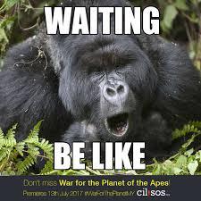 Sos Meme - ape meme 1 cilisos current issues tambah pedas