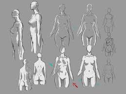 Female Body Anatomy Drawing Female Body Lighting By Moni158see Also Body Lighting Male