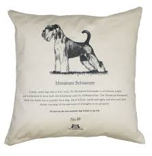 affenpinscher crufts 2016 miniature schnauzer cushion