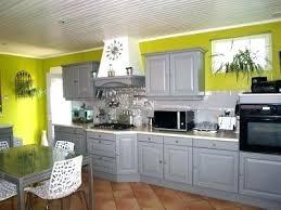 cuisine verte anis cuisine verte et grise cuisine grise mur vert anis cuisine grise