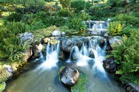 japanese garden pictures japanese garden images u0026 stock pictures royalty free japanese
