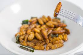 insectes dans la cuisine et si on mangeait des insectes à l apéro le fourniresto com