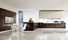 Luxury Cabinets Kitchen Kitchen Stylish Modern Kitchens Luxury Cabinets Modern Kitchens