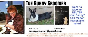 Rabbit Hutch For 4 Rabbits What U0027s Wrong With Keeping A Bunny Outdoors Bunnygroomer Com