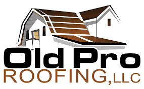 metal roofing pro roofing