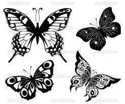 teki 25 den fazla en iyi white butterfly fikri