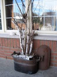 birch tree poaching linked to trendy home decor