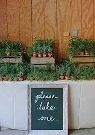best 25 plant wedding favors best 25 herb wedding ideas on herb bouquet herb