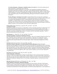 Technical Project Manager Resume Technical Lead Resume Create My Resume Sample Leadership Formal