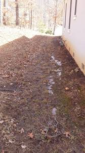 landscape contractor archives lawn n order