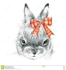 bunny rabbit sketch stock vector image of vector easter 9264846