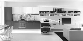 White Small Kitchen Designs by Surprising Modern Kitchen Interior Black And White Design Ideas 4