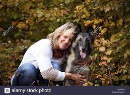 belgian shepherd nature smiling blond woman with belgian shepherd stock photo royalty