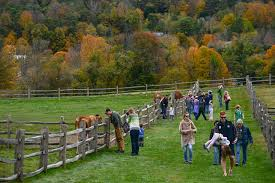 best thanksgiving traditions in every state vermont billings farm
