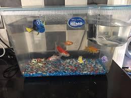 finding nemo aquarium fish tank in southton hshire gumtree