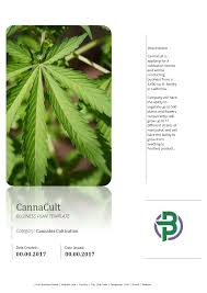 cannabis investor pitch deck template cannabusinessplans com