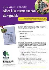 chambre agriculture 68 calaméo ocm viticole 2013 2018