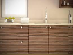 ebony macassar cabinets doors
