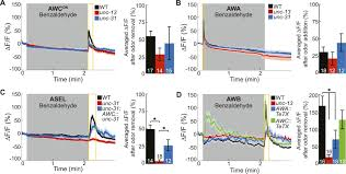 Awc Map Circuit Mechanisms Encoding Odors And Driving Aging Associated