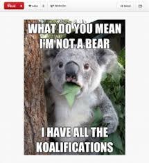 Funny Memes Pinterest - witty memes pinterest image memes at relatably com