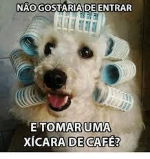 Cafe Meme - namogostariade entrar etomaru uma xicara de cafe meme on sizzle