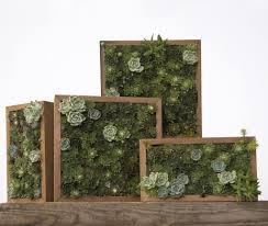 Hg Living by Living Pictures Turn Vertical Gardening Into Art For Outdoor Walls