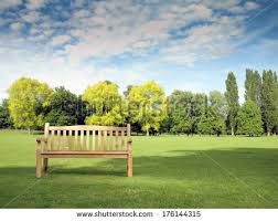 Benches In Park - park bench stock images royalty free images u0026 vectors shutterstock