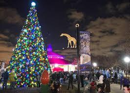 brookfield zoo winter lights brookfield zoo comes alive with holiday magic mysuburbanlife com