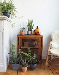 Zu Besuch Bei Igor Happy Interior Blog Contemporary 841 Best Bring The Outdoors In Images On Pinterest Green Plants