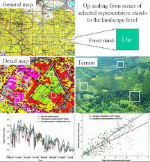Russian Boreal Forest Disturbance Maps by Cermák J Nadezhdina N Trcala M Simon J 2015 Open Field