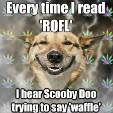 Rofl Meme - every time i read rofl i hear scooby doo trying to say waffle