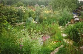 Wildlife Garden Ideas By Design Wildlife Garden