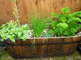 Herb Container Garden Gardening Tip Of The Week Challenge Your Imagination With Fairy