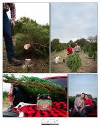 couples portraits at christmas tree farm olvera photography