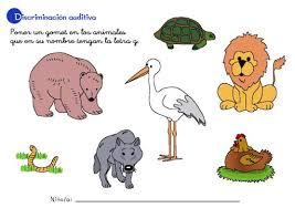 imagenes q inicien con la letra u objetos o animales que empiecen con la letra u imagui