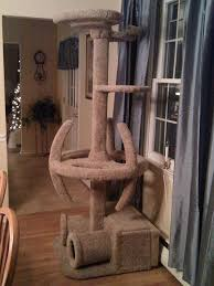 floor ceiling cat tree designs u2014 unique hardscape design cat