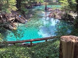 Three Sisters Springs Map Best 25 Florida Springs Ideas On Pinterest What Is Swimming