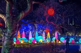 phipps conservatory christmas lights 30 ways families can celebrate the holidays in pittsburgh