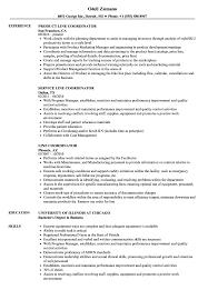 sle of resume line coordinator resume sles velvet