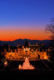 142 best images about biltmore at christmas on pinterest trees