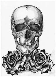 skull with roses a4 by eszkaaa on deviantart